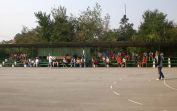 Traditionelles Handballturnier am Sonntag
