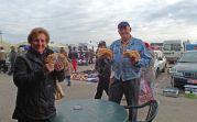 Mit Elisabeth Martini und Adam Csonti auf dem sonntäglichen Großmarkt in Lovrin