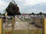 Auf dem Neugässer Friedhof